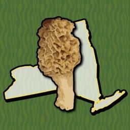 New York Mushroom Forager Map!
