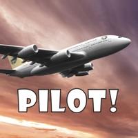Codes for Pilot! Hack