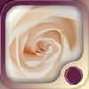 Love & Intimacy Hypnosis - iPhoneアプリ