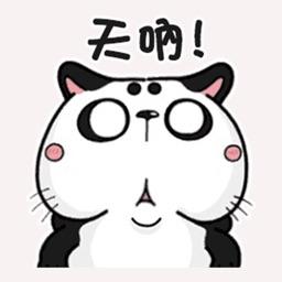 A cat like a panda