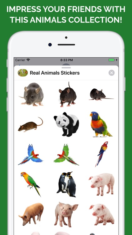 Real Animals Emoji Stickers screenshot-7