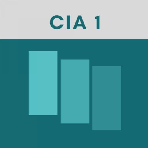 CIA Part 1 Exam Flashcards