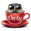 Owly - Prevent Display Sleep