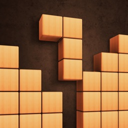 Fill Wooden Block: Cube Puzzle