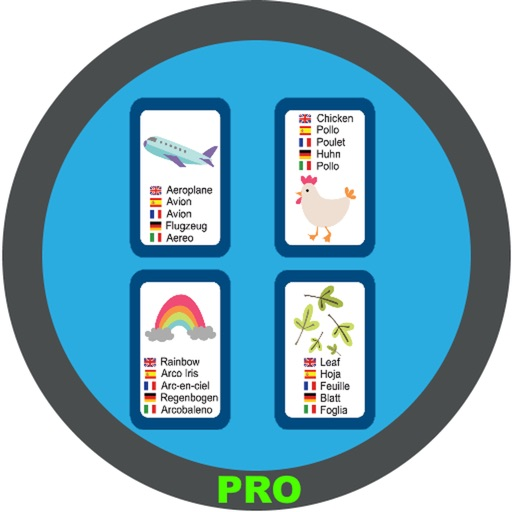 English Picture Dictionary Pro