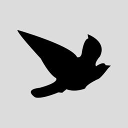 Blackbird Worldwide Corp.