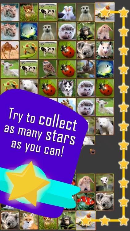 Onnect – Pair Matching Puzzle screenshot-7