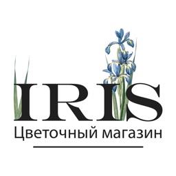 IRIS   Тула