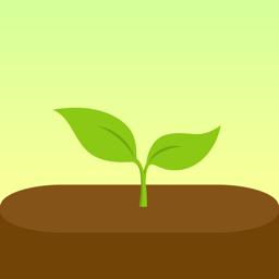 Ícone do app Forest