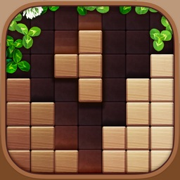 Wood Block Puzzle Master