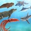 海洋動物の戦闘シミュレータ - iPhoneアプリ