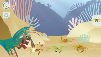 タイニーポップによるサンゴ礁のおすすめ画像3