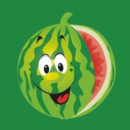 Watermelon Stickers!