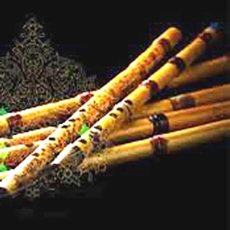 Persian Ney, Flute Instrument
