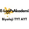 Sefa Tedik - Biyoloji TYT AYT  artwork