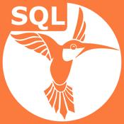 Sql Recipes app review