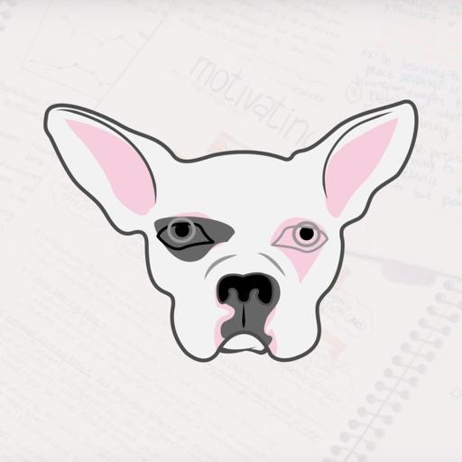 Study Notes ABA