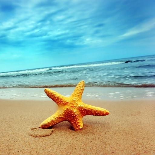 BeachStory