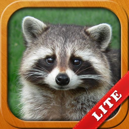 Animals for Kids, toddler game