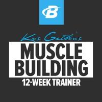 kris gethin 12 week muscle builder day 16