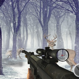 Animals Shooting Sniper