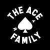 Austin Mcbroom - The ACE Family artwork