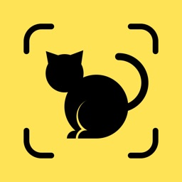 Cat Pal: Breed ID & Care Guide