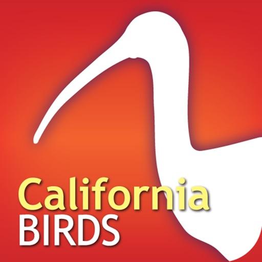 Audubon Birds of California