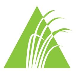 Altamaha Federal Credit Union