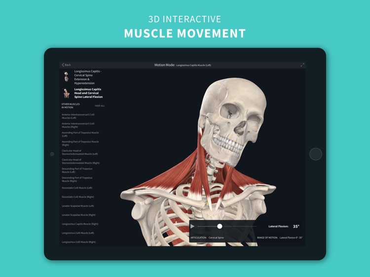 Complete Anatomy 2022 screenshot-0