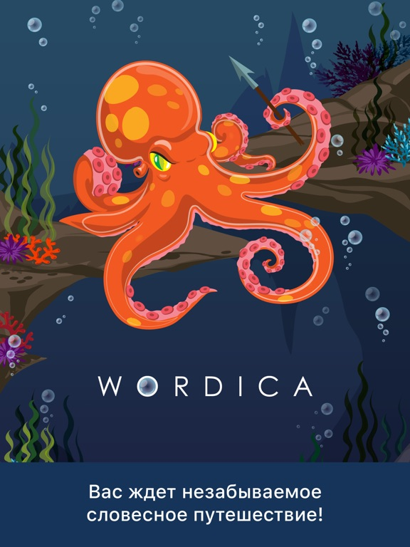 Wordica на iPad