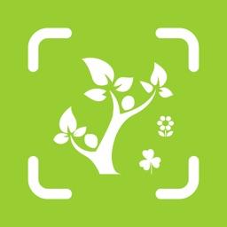 植物识别-认识植物图鉴平台