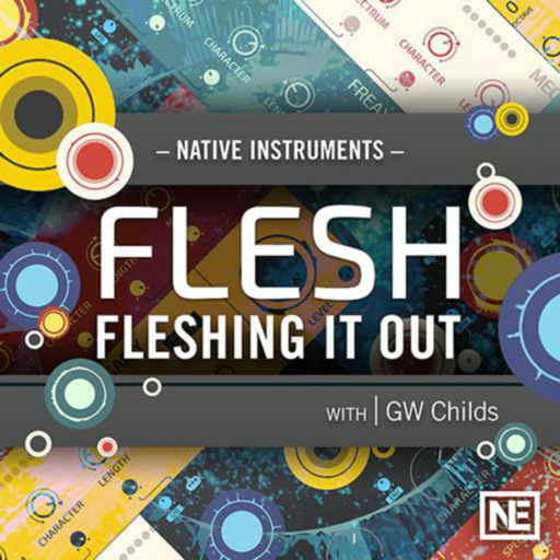 Fleshing It Out : Flesh 101