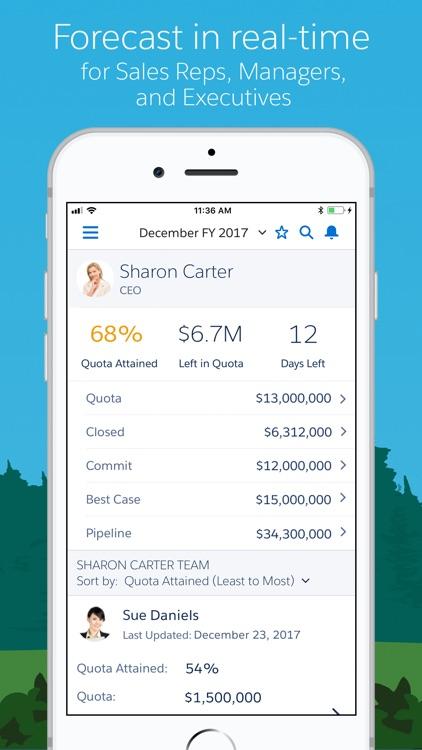 Salesforce screenshot-3