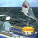 uCaptain: Boat Fishing Game 3D Hack Online Generator