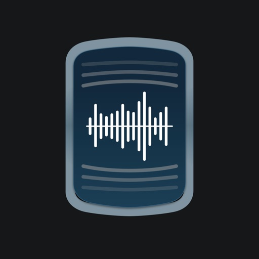Voice to Text Pro - Transcribe