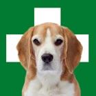 Erste Hilfe Hund icon