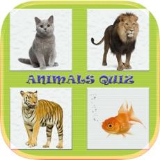 Activities of Animals Quiz Game In World