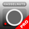 Hasselnuts Pro
