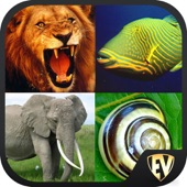 Animals Encyclopedia Guide