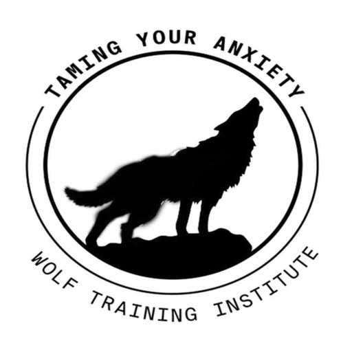 Taming Your Anxiety