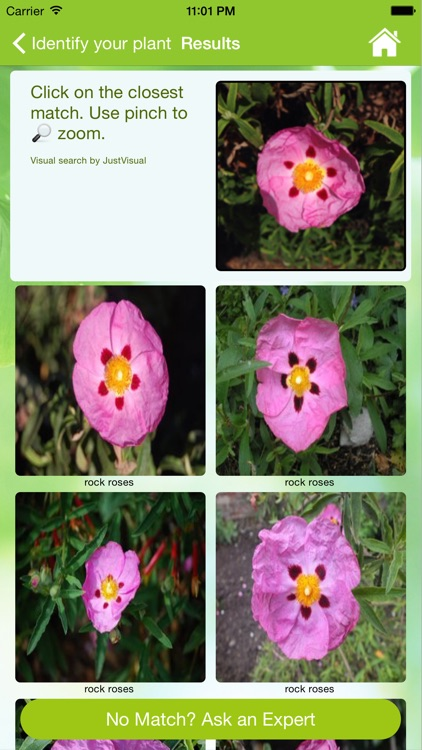 Garden Answers Plant Id screenshot-3