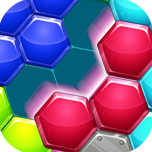 Physical Hexagons-Joy Puzzles