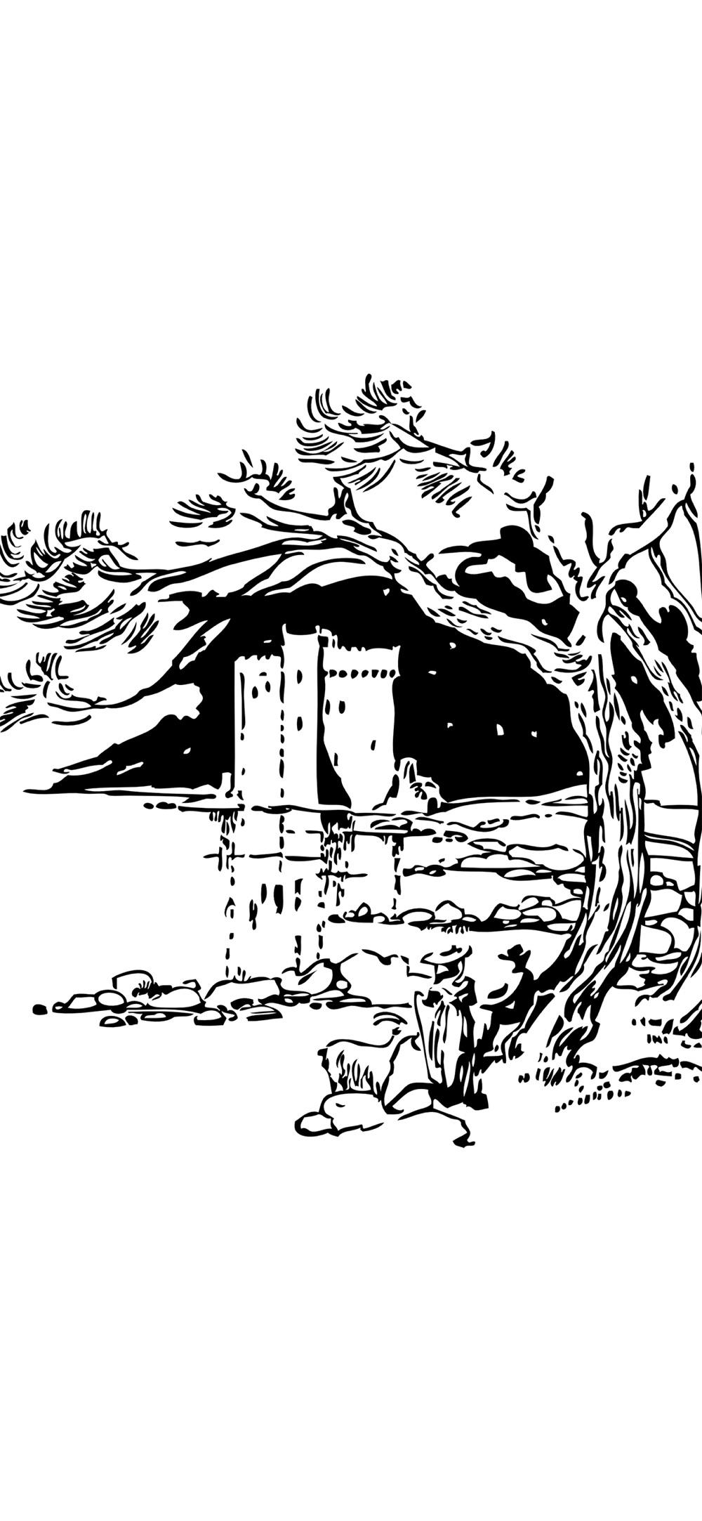 Swamp Castle Cheat Codes