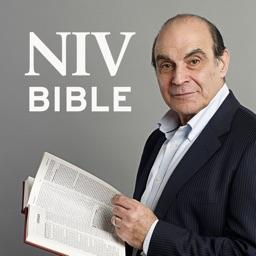 NIV Audio Bible: David Suchet