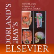 Dorlands Medical Dictionary app review