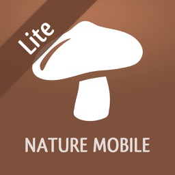 Mushroom LITE - Field Guide