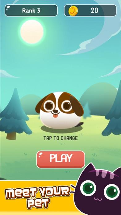 Pet Picnic screenshot one