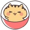 にゃんこガチャガチャ「きゃらきゃらマキアート」の猫集めゲームアイコン