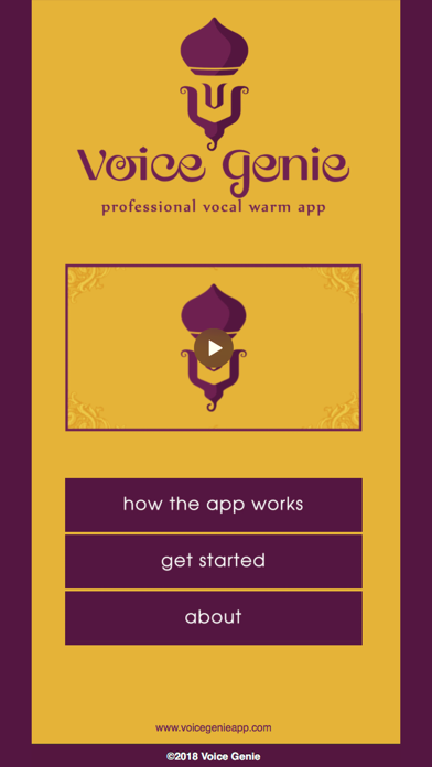 Voice Genie Lite screenshot one